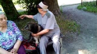 Заядлая курильщица на детской площадке(Данная мадама ходит по несколько раз в день на детскую площадку покурить и выгулять собаку. Истерично ругае..., 2014-08-03T22:02:18.000Z)
