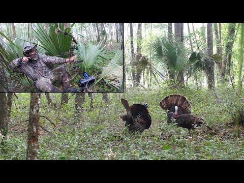 Hunting Old Florida - Bullfrog's Turkey Season 2016
