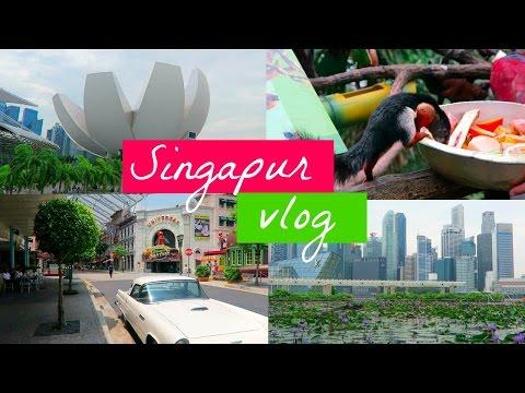 SINGAPUR VLOG- Universal studios, Zoo, Gardens by the bay, Art of science