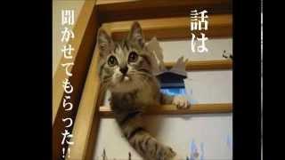 【2011年04月 深夜の馬鹿力】 伊集院光が、日本昔話のDVDの中に変な...
