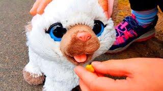 КОШКА КОТОРАЯ ЕСТ И ХОДИТ В ТУАЛЕТ ОБЗОР Распаковка FurReal Friends игрушка кошка
