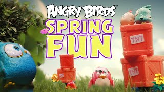 Angry Birds | Fun in the spring with toys!