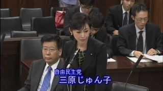 2015年8月31日 『北朝鮮による拉致問題等に関する特別委員会』にて質問...