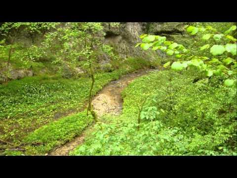Raglan road - Celtic music (bagpipes & tin whistle)