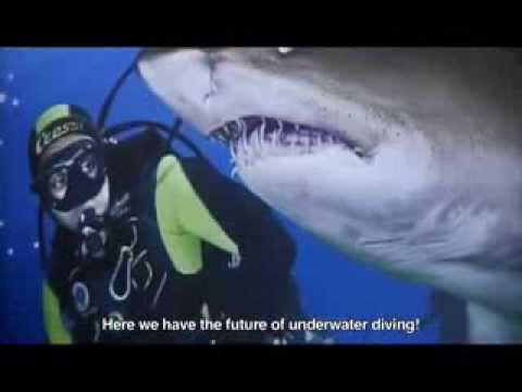 Dive with Sharks  - L'Aquarium de Barcelona