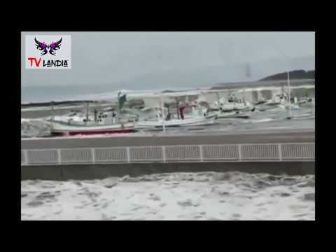 Tsunami Video 001