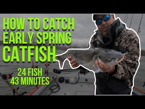 How To Catch Early Spring Catfish (Crazy Solo Action) 24 Fish In 43 Minutes