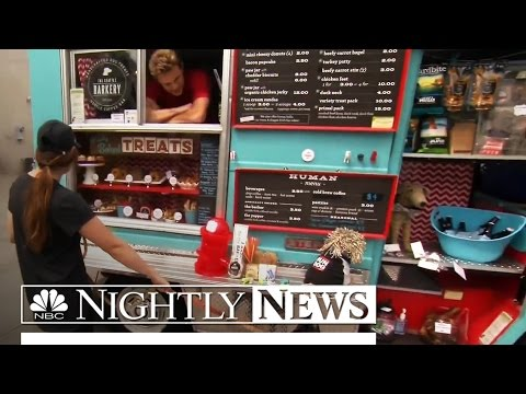 In Seattle, Food Trucks Are Going to the Dogs | NBC Nightly News