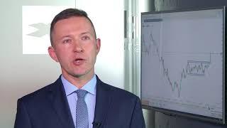 Nie powinno dojść do panicznej wyprzedaży polskiej waluty