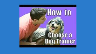 How To Train A Dog - Free Trial Dog Training