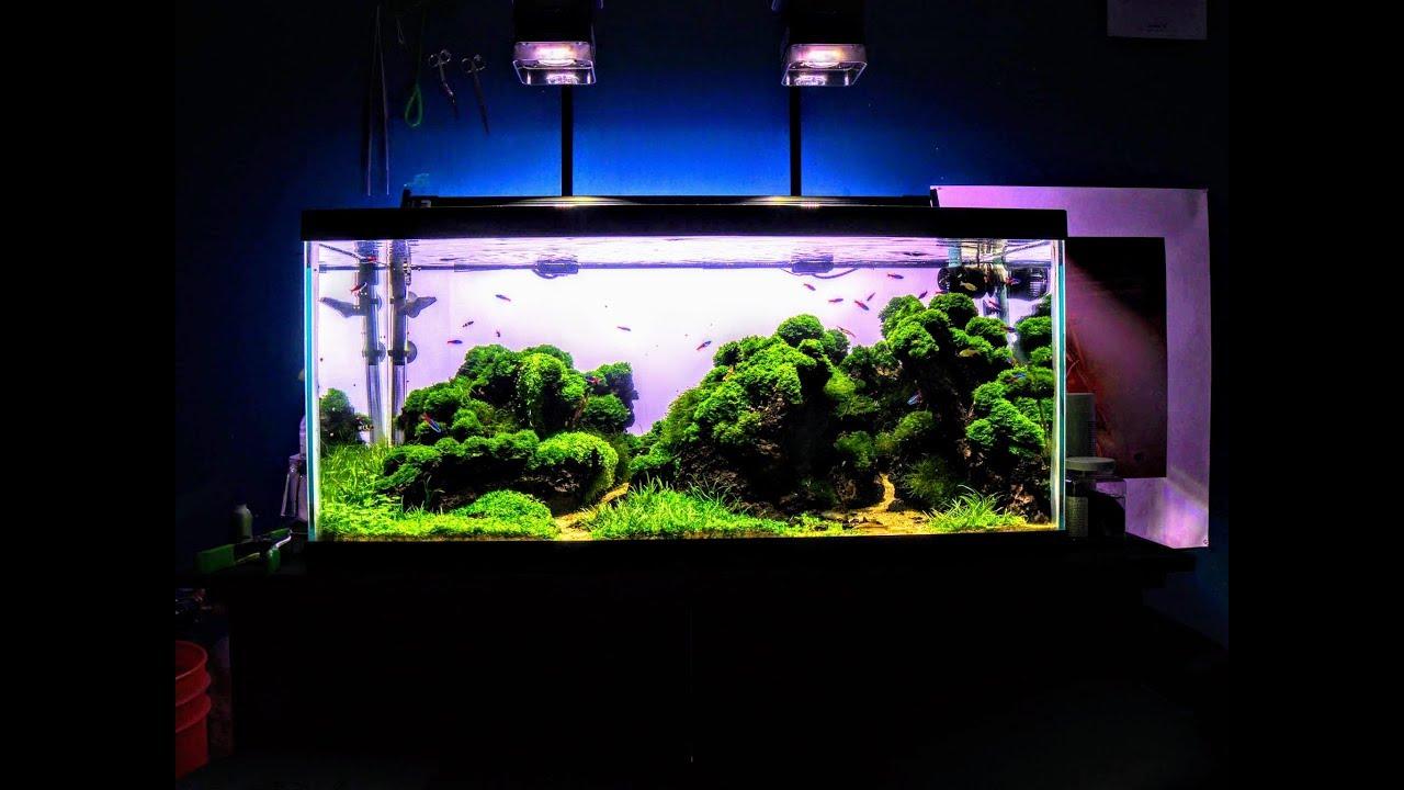 iceland aquascape 150 liter planted aquarium 2016 aquascaping youtube. Black Bedroom Furniture Sets. Home Design Ideas