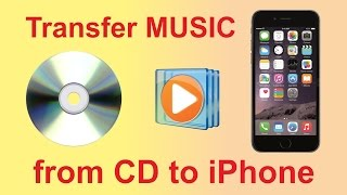 How to transfer music from CD to iPhone using Windows Media Player