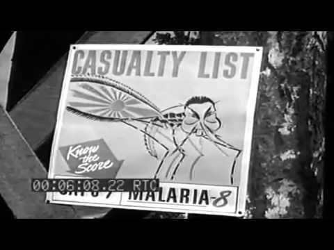 Malaria & Mosquito Control, Munda, New Georgia Island; Troops Invade Licata Sicily, July 1943 (full)