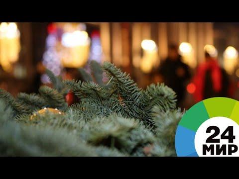 «Желтый» Новый год: москвичей предупредили о потенциально опасной погоде - МИР 24
