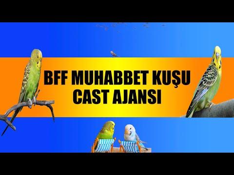 BFF MUHABBET KUŞU CAST AJANSI