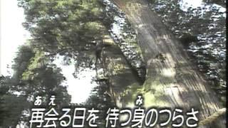 彭城渉オリジナル(いで湯山中恋おんな)ご当地ソング