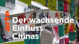 Taiwan: Asyl für Hongkongs Demokraten   ARTE Reportage