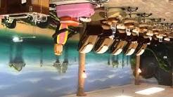 Island Nails & Spa in  Oak Harbor, WA 98277 (1382)