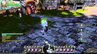 Dragon Nest SEA:Dawning star mount aura (level 23 guild item)