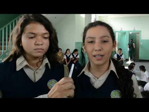 Inicio del proyecto ECO-ESCUELAS en el colegio Armando Reveron