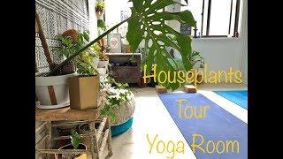 2018 Houseplants Tour Yoga Room Updates - Sydney Spring Edition