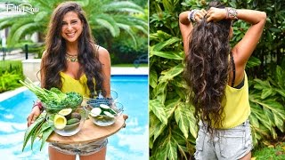 Top 5 Ingredients to Eat for Healthy Hair!