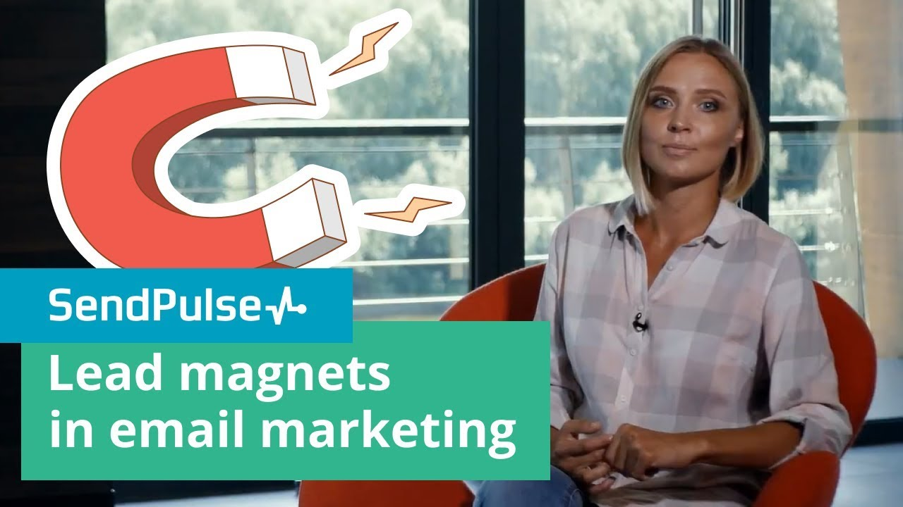Lead magnets in email marketing. Their kinds and ways to use them effectively