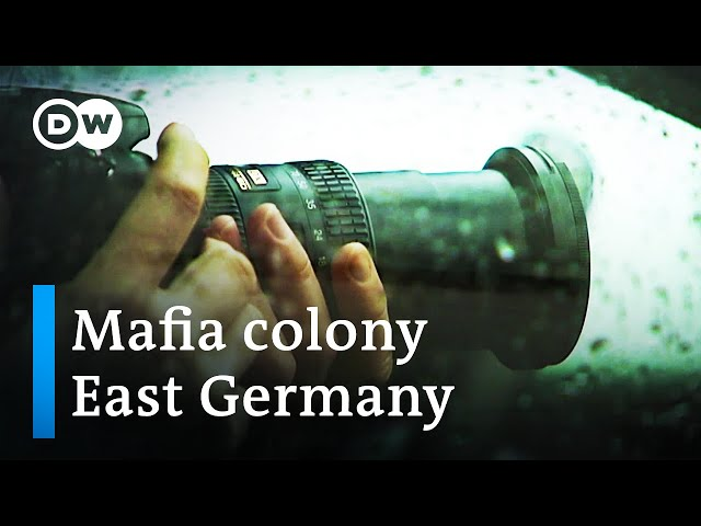 Hidden Mafia machinations in Germany's former East  | DW Documentary