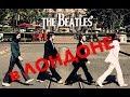 Beatles лучшие альбомы