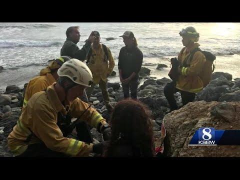 Inside rescue of woman who survived Big Sur crash