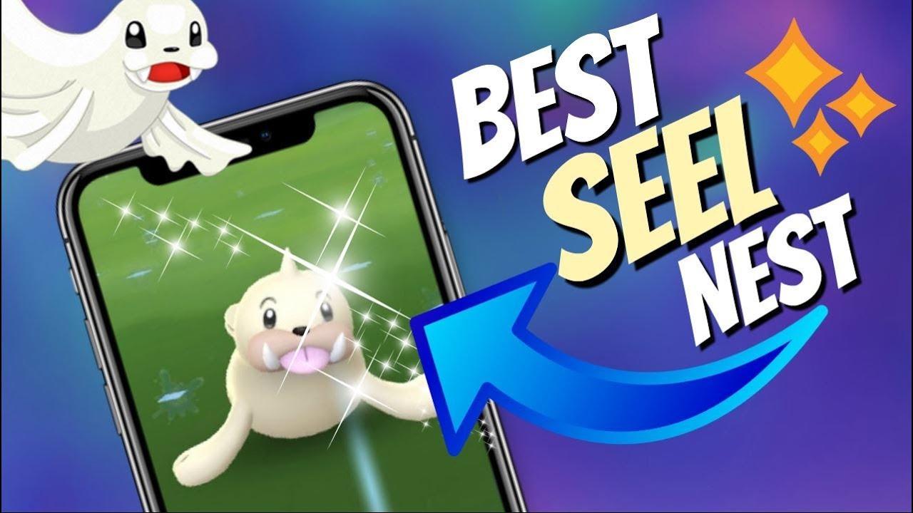 Best Shiny Seel Nest in Pokemon GO! Coordinates