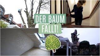 ABENTEUER EIGENHEIM #6 - 10h BAUMFÄLLUNG , Treppen schleifen, Renovierungsupdate