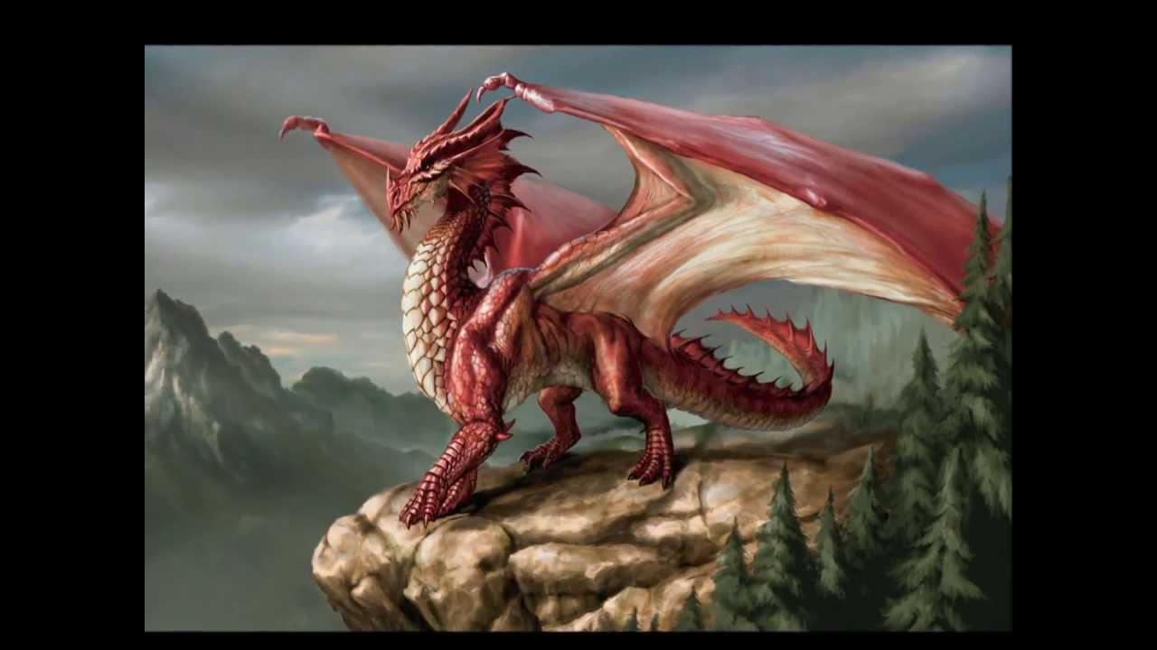 Dragon Of