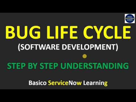 Bug Life Cycle Phases | Bug Life Cycle Explanation