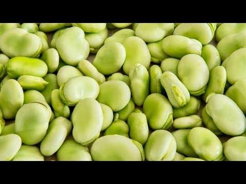 5 Amazing Health Benefits Of Lima Beans