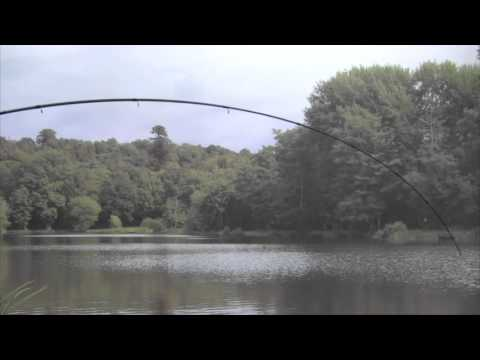 Tackle Fanatics TV - Shimano Catana Barbel Classic Rod
