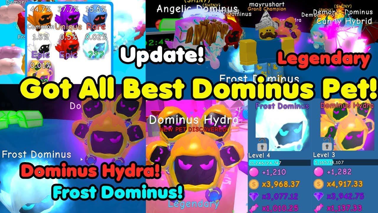 Update! Got Best Dominus Legendary Pets! New Island! Got All Dominus Pets! - Bubble Gum Simulator