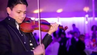 Orchestre oriental Mazzika - Solo violon +33 6 86 62 73 23