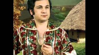 Ion Dolanescu - Ionelul mamii