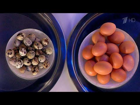 Таблицы содержания белков и жиров в разных видах продуктов