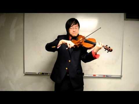 Melodies of Life Final Fantasy 9  -violin-