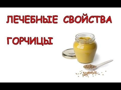 Горчица.  Лечебные свойства горчицы.