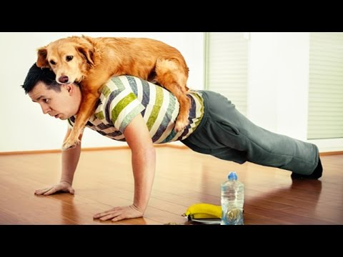 Amazing Dog Help the Owner Workout | So FUNNY!