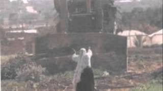 Video Ethiopian Muslims Being Disregarded ,  shocking video [must watch] download MP3, 3GP, MP4, WEBM, AVI, FLV Mei 2018