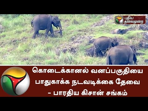 Kodaikanal forest areas should be protected from illegal activities of Forest Department