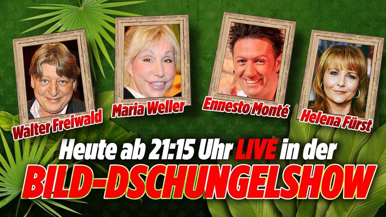 walter freiwald annemarie weller helena frst ennesto monte bild dschungel show 210117 tag 9 youtube - Helena Furst Lebenslauf