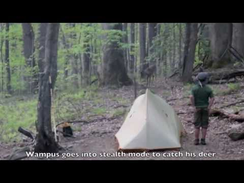 wampus cat catching a deer youtube