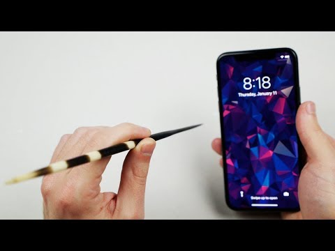 Can Porcupine Quills Puncture an iPhone X?