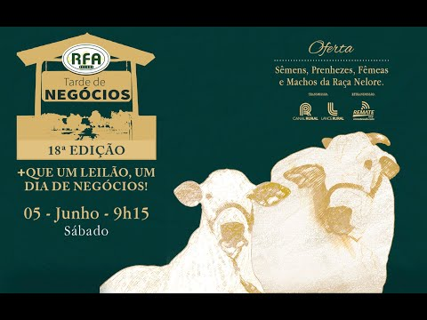 LOTE 135