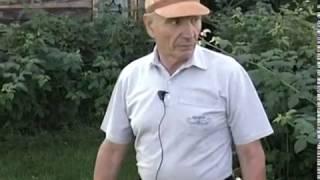 Газон - любимая грядка(Ещё больше информации на нашем сайте - http://www.ogorod42.ru Подписывайтесь на канал Урожайные грядки - https://www.youtube.com/c..., 2016-04-22T05:11:49.000Z)